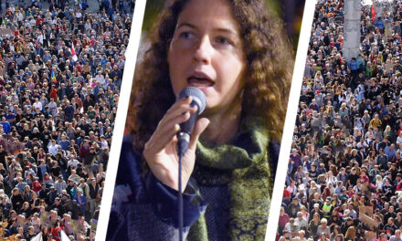 Ricorsi, Diffide e Denunce a tutela dei Cittadini Italiani