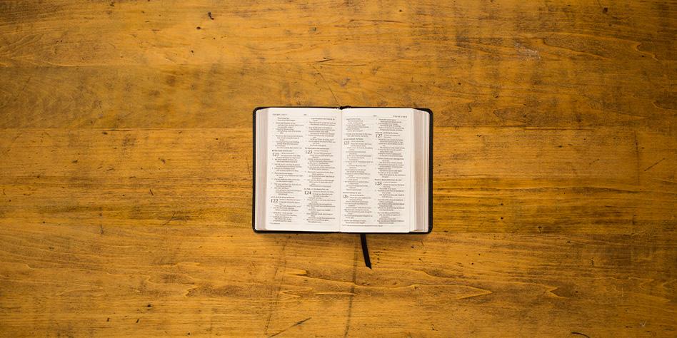 La Bibbia e le sue molteplici interpretazioni – MIKE PLATO
