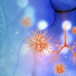 Sistema Immunitario e Linfociti T – MAURO MANTOVANI – Direttore IMBIO